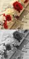 花のギフト セレクトフラワーショップコンセプト バレンタインのお花