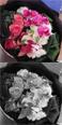 花のギフト セレクトフラワーショップコンセプト 還暦祝いのお花